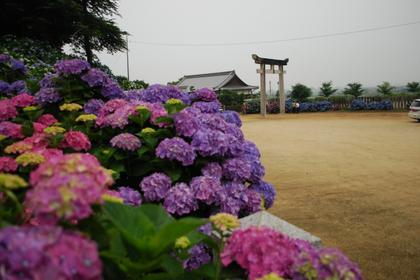 100620粟井神社1.JPG