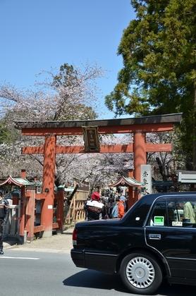 120408_氷室神社.jpg