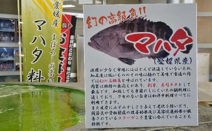 130113_幻の高級魚.jpg