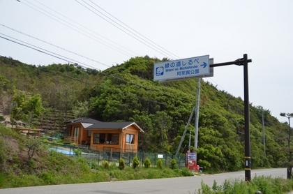 110515_9_緑の道しるべ.JPG